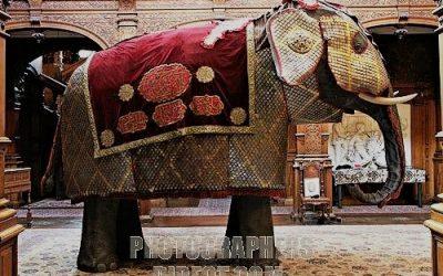 Ritter auf vier Beinen: Kriegselefanten und ihre Rüstung