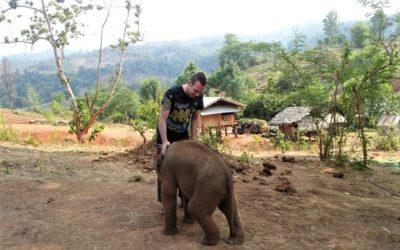"""Der """"Farang"""" zu Gast bei Elephant Special Tours"""